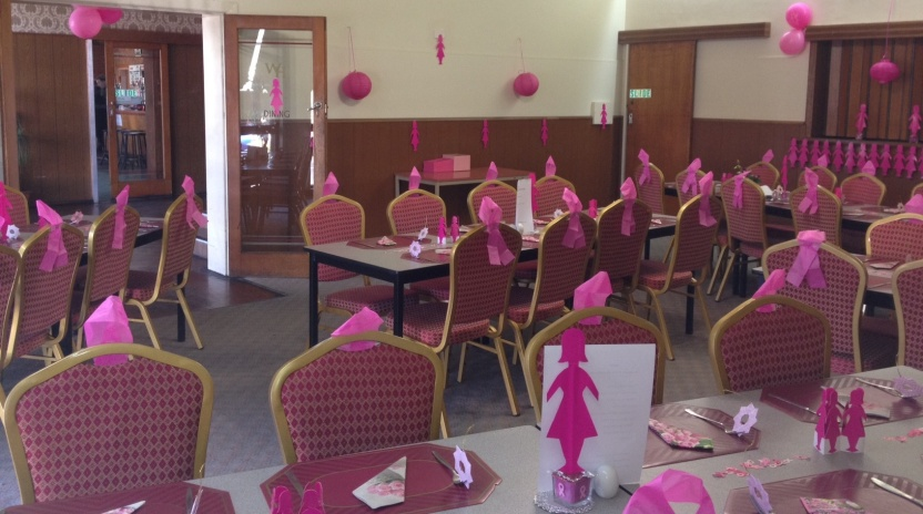 Fntns  Acc -Function room pink